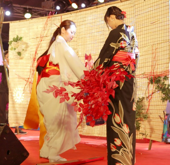 Đêm văn hóa Việt- Nhật tại Đà Nẵng ảnh 2