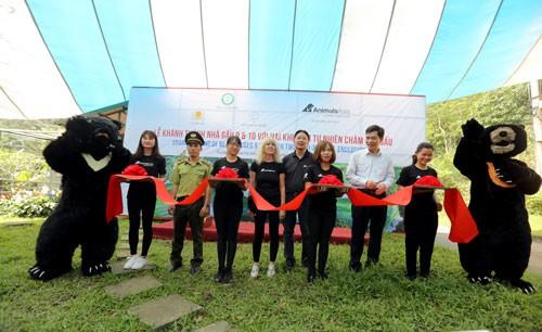 Hoàn tất dự án Trung tâm Cứu hộ gấu Việt Nam ảnh 1