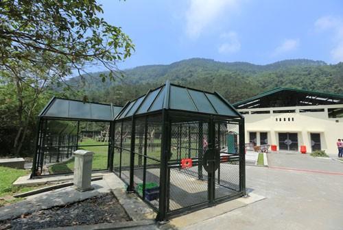 Hoàn tất dự án Trung tâm Cứu hộ gấu Việt Nam ảnh 3