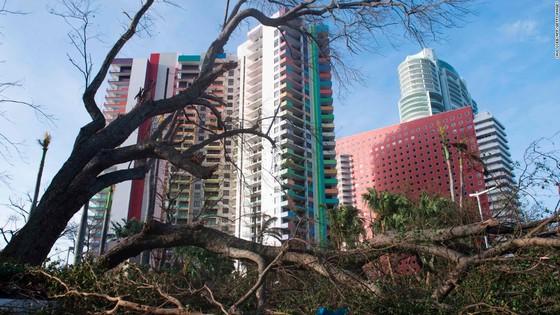 Florida tan hoang sau bão Irma ảnh 21