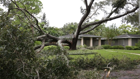 Florida tan hoang sau bão Irma ảnh 6