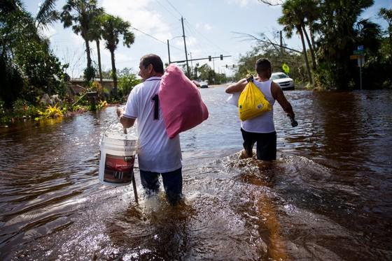 Florida tan hoang sau bão Irma ảnh 4