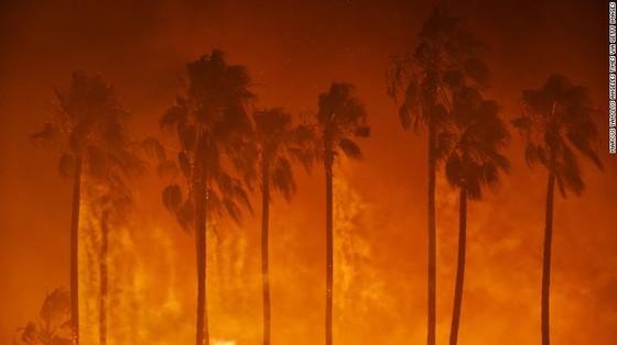 Mỹ: Cháy rừng tại Nam California tiếp tục diễn biễn phức tạp  ảnh 8