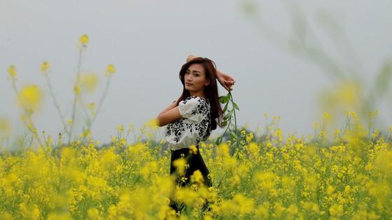 Cánh đồng hoa cải rực rỡ trong nắng đông ảnh 9