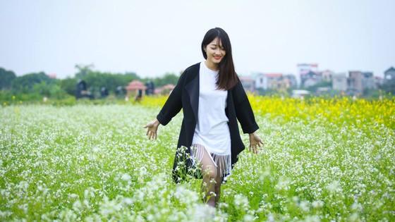 Cánh đồng hoa cải rực rỡ trong nắng đông ảnh 10