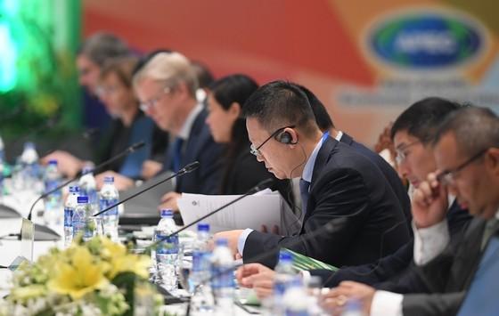 Khai mạc Hội nghị Thứ trưởng Tài chính và Phó Thống đốc Ngân hàng Trung ương APEC 2017 ảnh 4