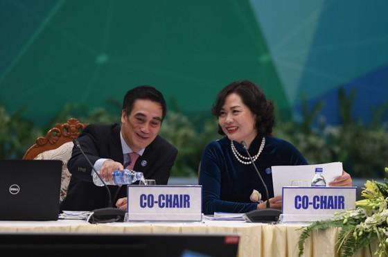 Khai mạc Hội nghị Thứ trưởng Tài chính và Phó Thống đốc Ngân hàng Trung ương APEC 2017 ảnh 1