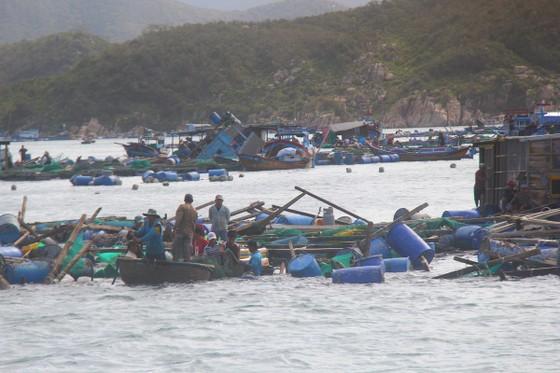 Khánh Hòa có 42 người chết do bão ảnh 1