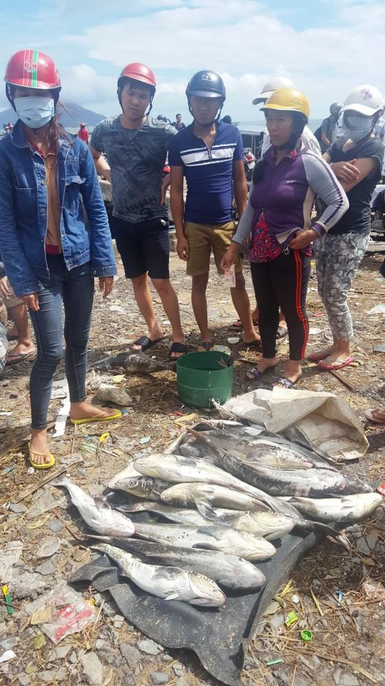 Khánh Hòa có 42 người chết do bão ảnh 2