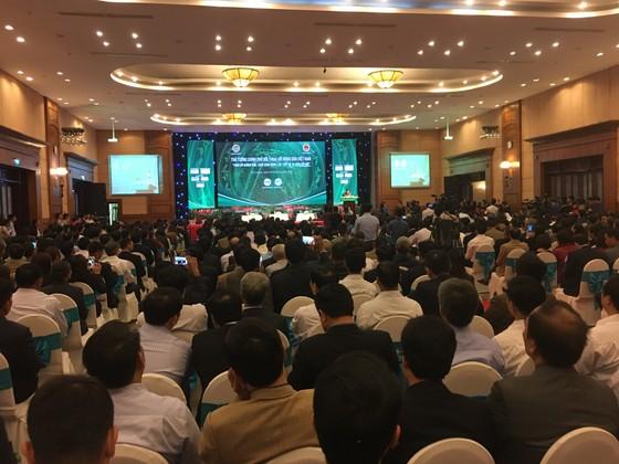 Thủ tướng Nguyễn Xuân Phúc: Trước khi gieo hạt nông dân phải biết tiêu thụ ở đâu ảnh 2