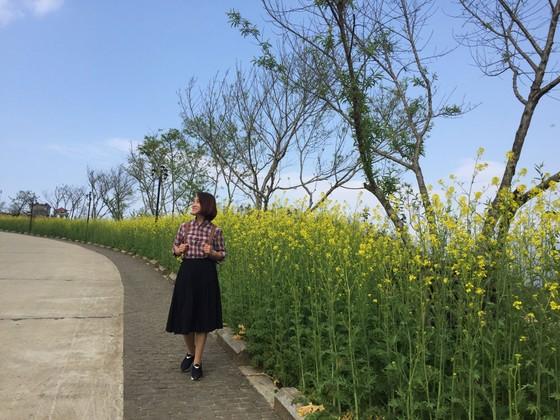 Tôi thấy hoa vàng trên đồi xanh Fansipan ảnh 3