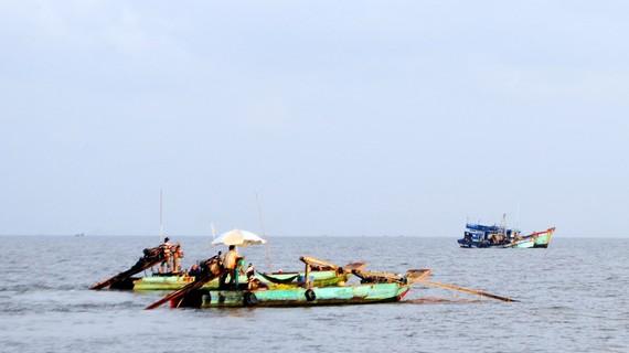 Khai thác thủy sản trên vùng biển Cà Mau, khu vực xã Khánh Hội đến thị trấn Sông Đốc