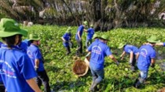 One of activities Vietnamese young volunteers do (Photo: SGGP)