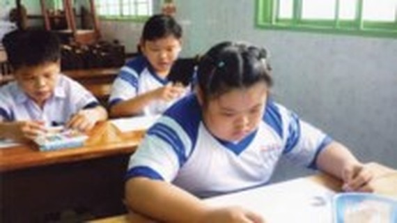 HCMC wants vocational training for disabled students