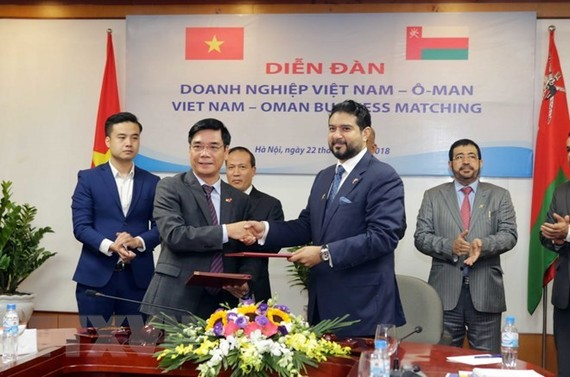The signing of MoU between VCCI and OCCI (Source: VNA)