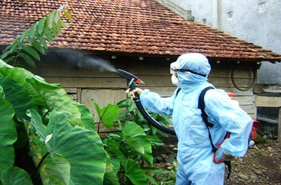 A medical worker sprays chemical to kill mosquitos and its larva (Photo: SGGP)
