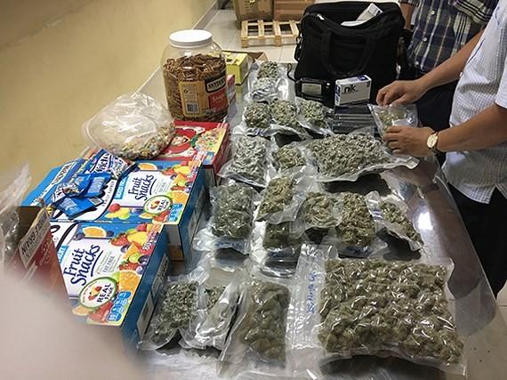 Four kilogram cannabis detected in Tan Son Nhat Airport