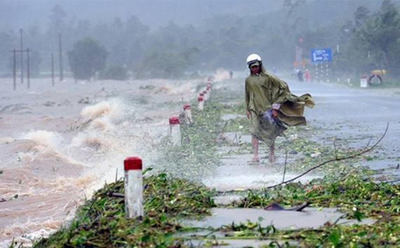 The tropical low depression can cause flash flood, landslide and flooding in the mountainous and lowland areas.Photo: VNS