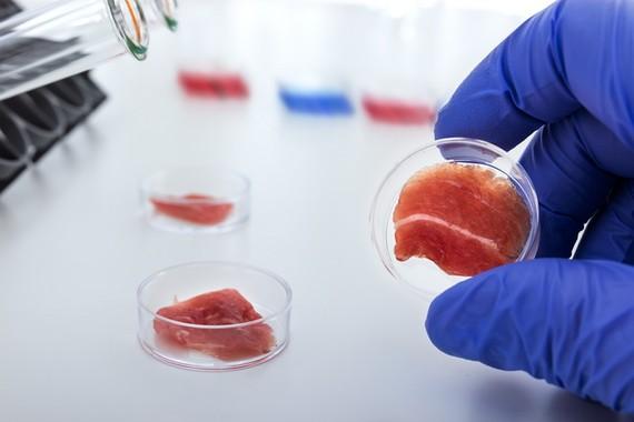 實驗室培育的人造肉。