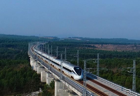 列車在環島高鐵西段棋子灣站附近行駛。(圖源:新華網)