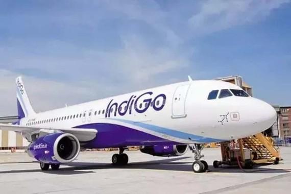 圖為印度靛藍航空(IndiGo Airlines)客機一瞥。(圖源:互聯網)