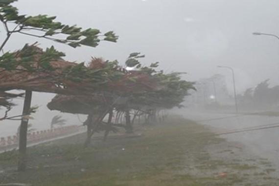 市防範天災與救援指委會:若超強颱風(10至13級)登陸本市的防範和應對方案顯示,預計本市24個郡、縣將有50萬7514人必須疏散到安全及堅固的地點。(示意圖源:互聯網)