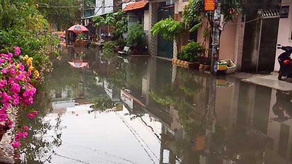 舊邑郡第十五坊黎德壽街688號小巷居民區雨後成澤國。
