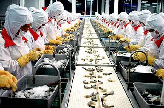 向美國出口的水產品企業生產線。