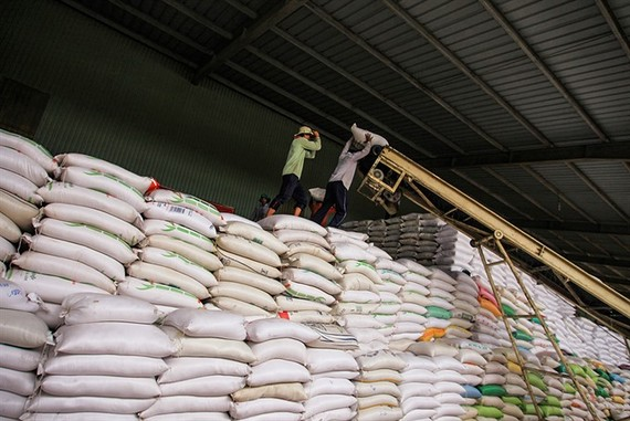 Rice bags loaded for export at a Kien Giang Import-Export Co factory in Kien Giang Province. (Photo: VNA/VNS)