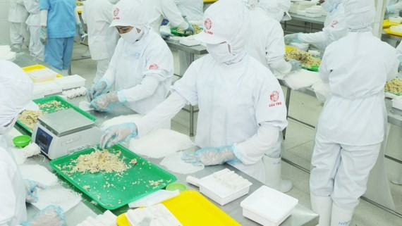 Workers process food to supply for Korean supermarket in HCMC (Photo: SGGP