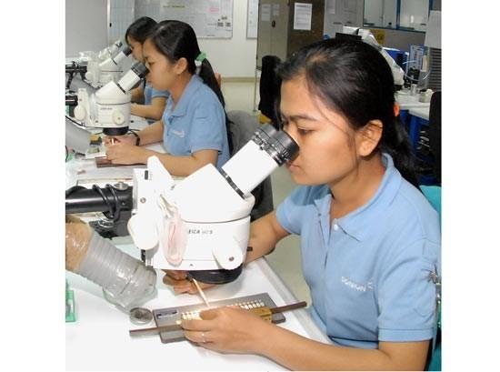 Electronic component production at Saigon Hi-Tech Park (Photo: SGGP)