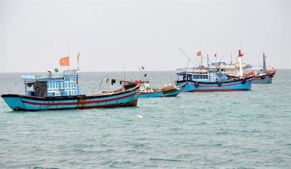 The Directorate of Fisheries is drafting a master plan on offshore fishing development until 2030, which says the funds needed for the sector by 2030 will be $1.87 billion. (Photo: thuyhaisan.net)