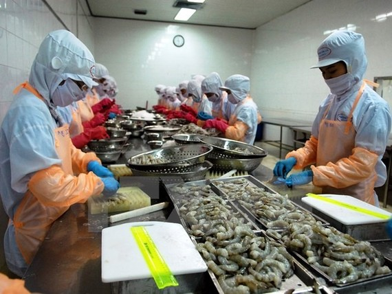 A processing line of frozen shrimp for exports. (Photo: VNA/VNS)