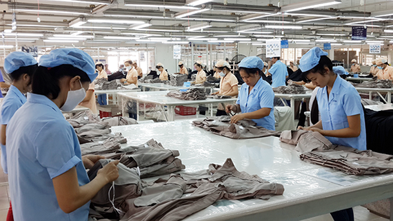Workers making export products at Saigon 3 Garment Company (Photo: SGGP)