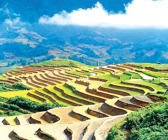 Vietnam will build Van Don, Phan Thiet and Sa Pa airports by 2020. The photo shows terraced fields in Sa Pa district, Lao Cai province, the northwestern region of Vietnam