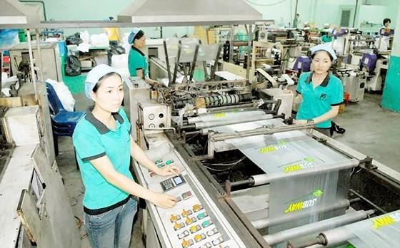 A Vietnamese plastic company (Photo: SGGP)