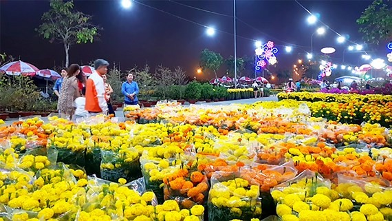The spring flower market in Binh Dien wholesale market, Binh Chanh district, HCMC in the last lunar New Year