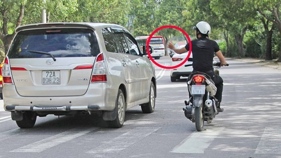 Cò đeo bám du khách khi đến Đà Lạt