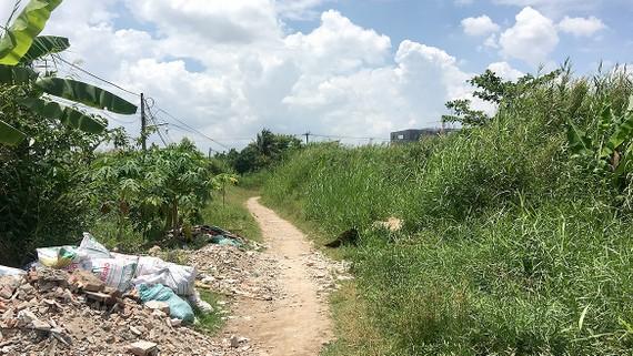 Một khu dự án treo ở xã Bình Hưng (huyện Bình Chánh, TPHCM) đất đai bị bỏ hoang,                                                              không có hạ tầng kỹ thuật đô thị.  Ảnh: TRẦN YÊN