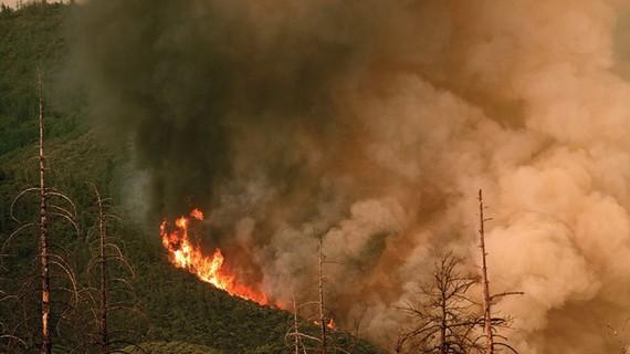 Khói lửa bốc lên từ đám cháy rừng ở vườn quốc gia Yosemite, bang California, Mỹ. Nguồn: AFP/TTXVN