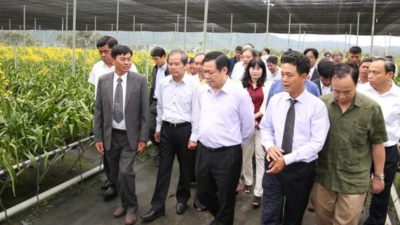 Phó Thủ tướng Vương Đình Huệ thăm vườn ươm hoa lan tại Lâm Đồng. Ảnh: VGP