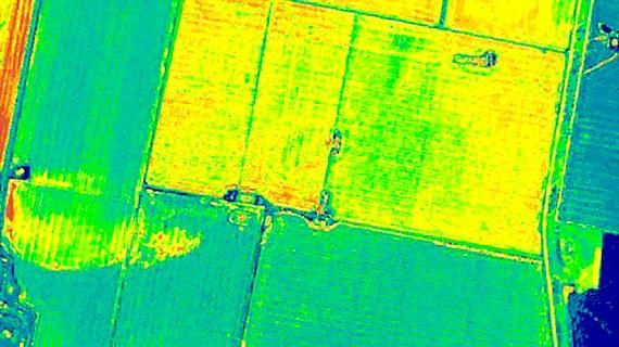 Lập bản đồ cây trồng bằng ảnh vệ tinh