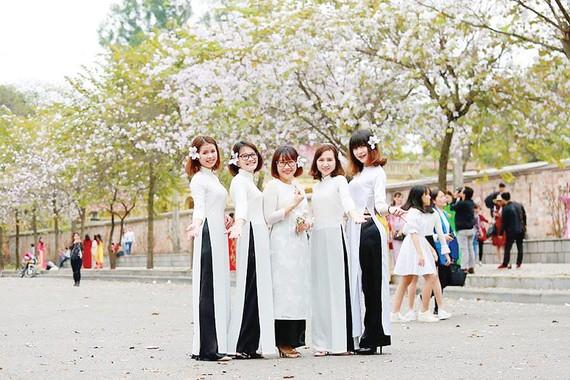 Thiếu nữ Hà Nội thích thú khoe sắc  cùng hoa ban                   Ảnh: G.PHAN