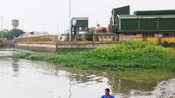 Nhà máy nằm sát bên sông Đồng Nai         Ảnh: THÀNH TRÍ