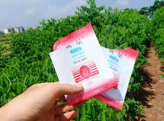 Thuốc bảo vệ thực vật gây nguy hiểm cho sức khỏe người dân đang sử dụng tràn lan ở nước ta