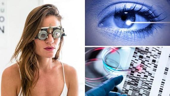 Chữa bệnh mù lòa bằng liệu pháp gien