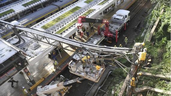 Hệ thống giao thông và điện tại Nhật Bản bị ảnh hưởng nặng sau khi bão Trami đổ bộ