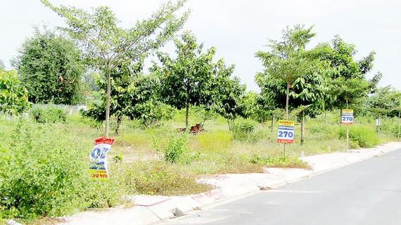 """""""Dự án vẽ"""" Alibaba Tân Thành Center City 1 tại xã Châu Pha, thị xã Phú Mỹ, tỉnh Bà Rịa - Vũng Tàu"""