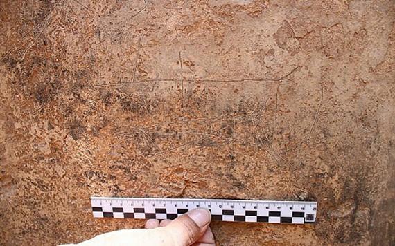 Israel phát hiện nhiều hình chạm khắc 2.000 năm tuổi