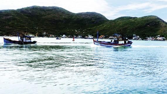 Kế hoạch nhận chìm trên 400.000m³ bùn xuống biển Quy Nhơn để khơi thông luồng chảy